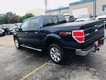 2014 Ford F-150 4WD XLT SuperCrew thumbnail image 08