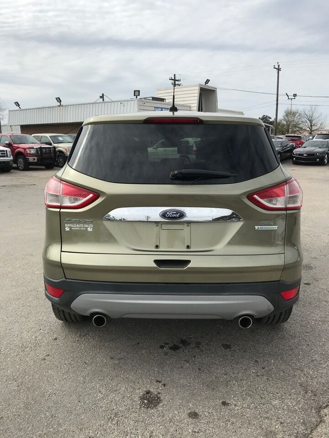 Ford Escape Vehicle Image 03